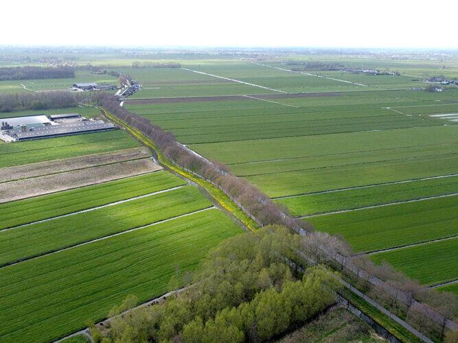 Omgeving Broekgraaf Noord
